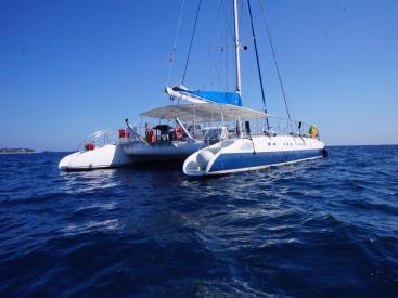 Ayc - Catamaran Tahiti 75 - A flot
