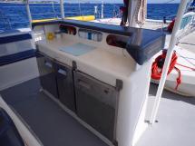 Ayc - Catamaran Tahiti 75 - Espace de réception