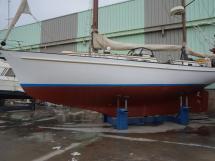 AYC - American Marine Magellan