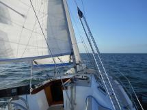 AYC Yachtbroker - OVNI 36 - Sous voiles