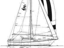 AYC - REINKE S10