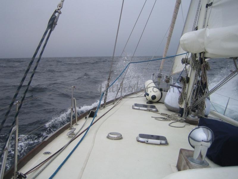AYC - ISLANDER 55 Pont