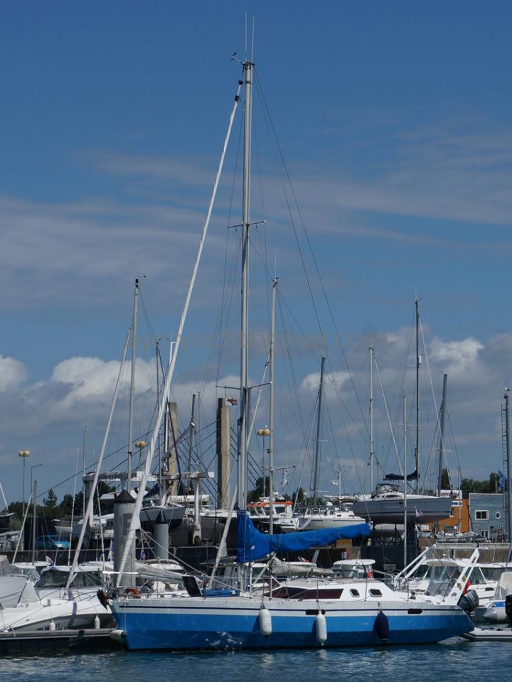 AYC Yachtbroker - OVNI 36 - Au ponton